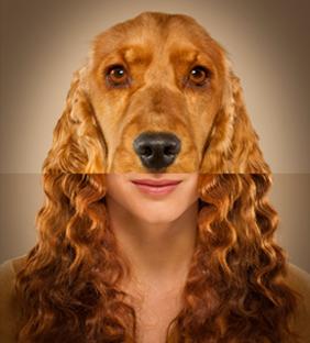 câinele şi fata