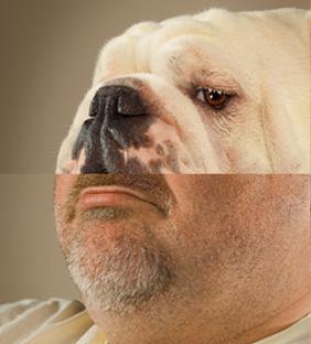 bărbatul şi bulldog-ul
