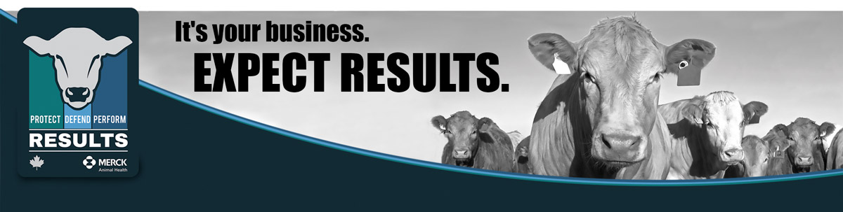 It's your business. Expect Results
