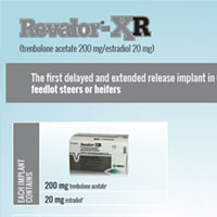 REVALOR®-XR Beef Cattle Growth